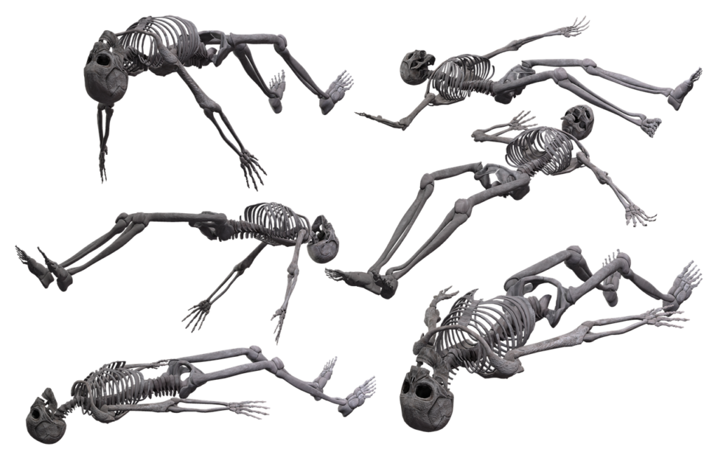 Ý nghĩa về bộ xương và những con số liên quan đến nó