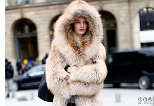 Mơ thấy áo khoác lông thú là điềm báo gì? May mắn hay xui?